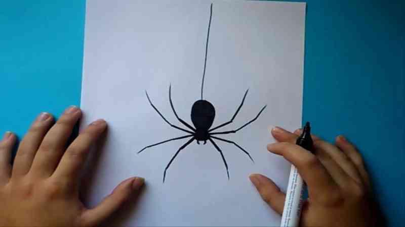 Múltiples significado de soñar con arañas