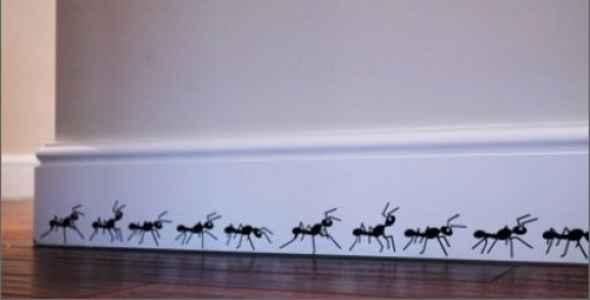 soñar con hormigas en la pared
