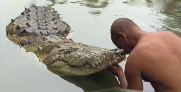 soñar que un cocodrilo te quiere morder