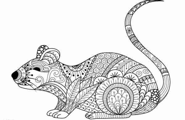Soñar con ratas grises