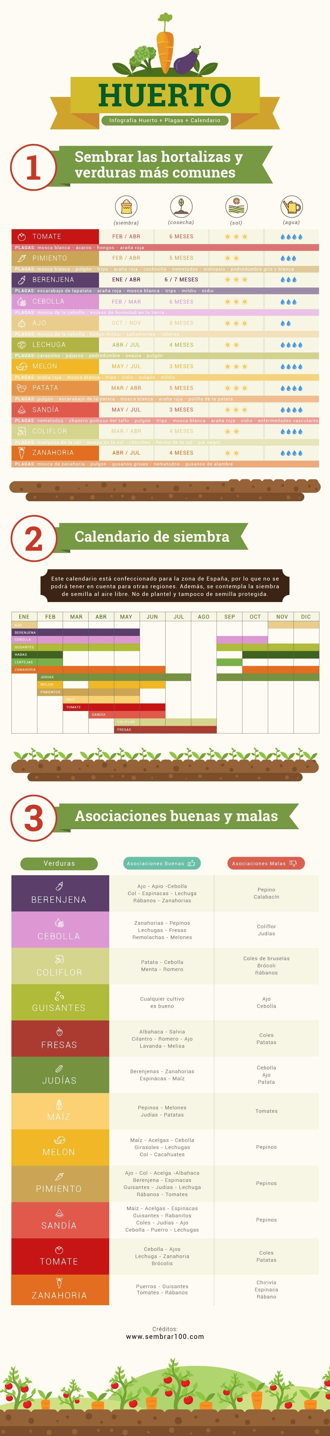 infografia_huerto-1-1